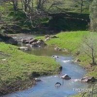 Clayton Palms Community  -  Creekside RV Area - Slide 2