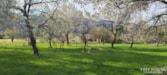 Hermosa Orchards Village - Slide 2 thumbnail
